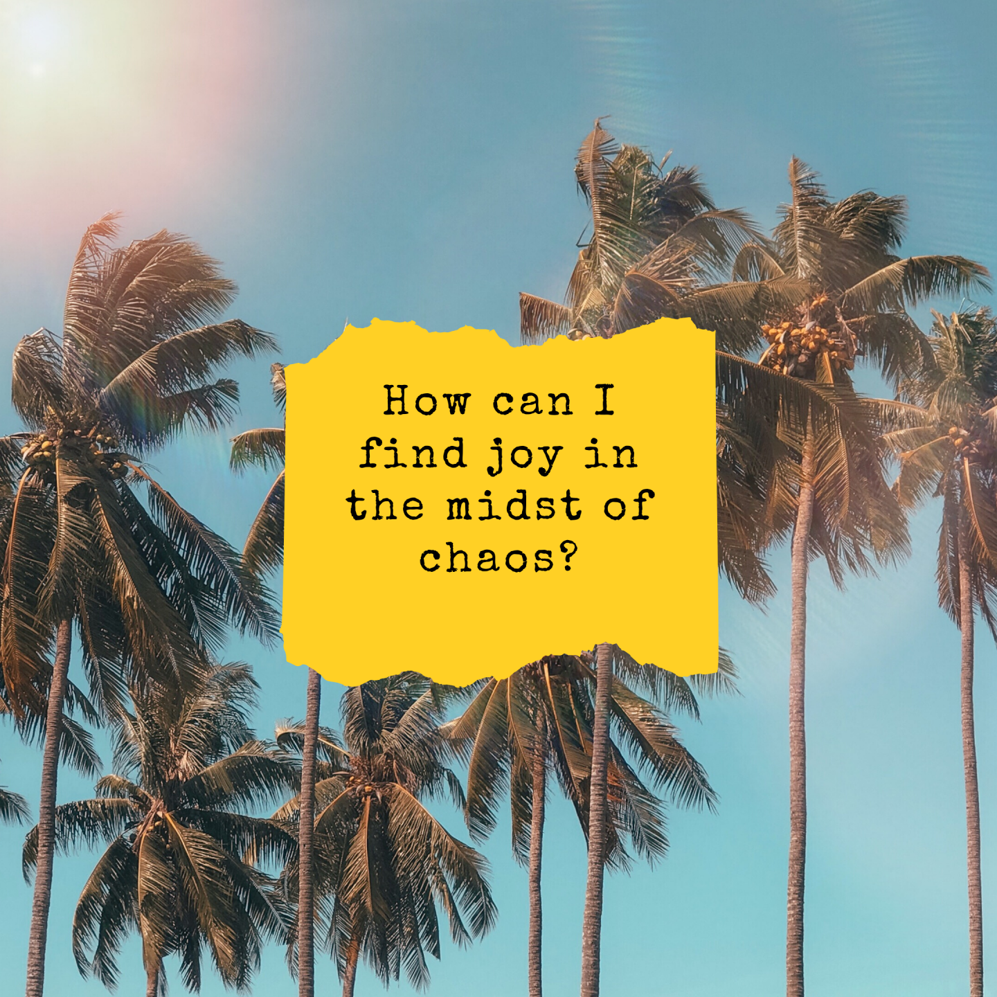 How Can I Find Joy In The Midst Of Chaos?