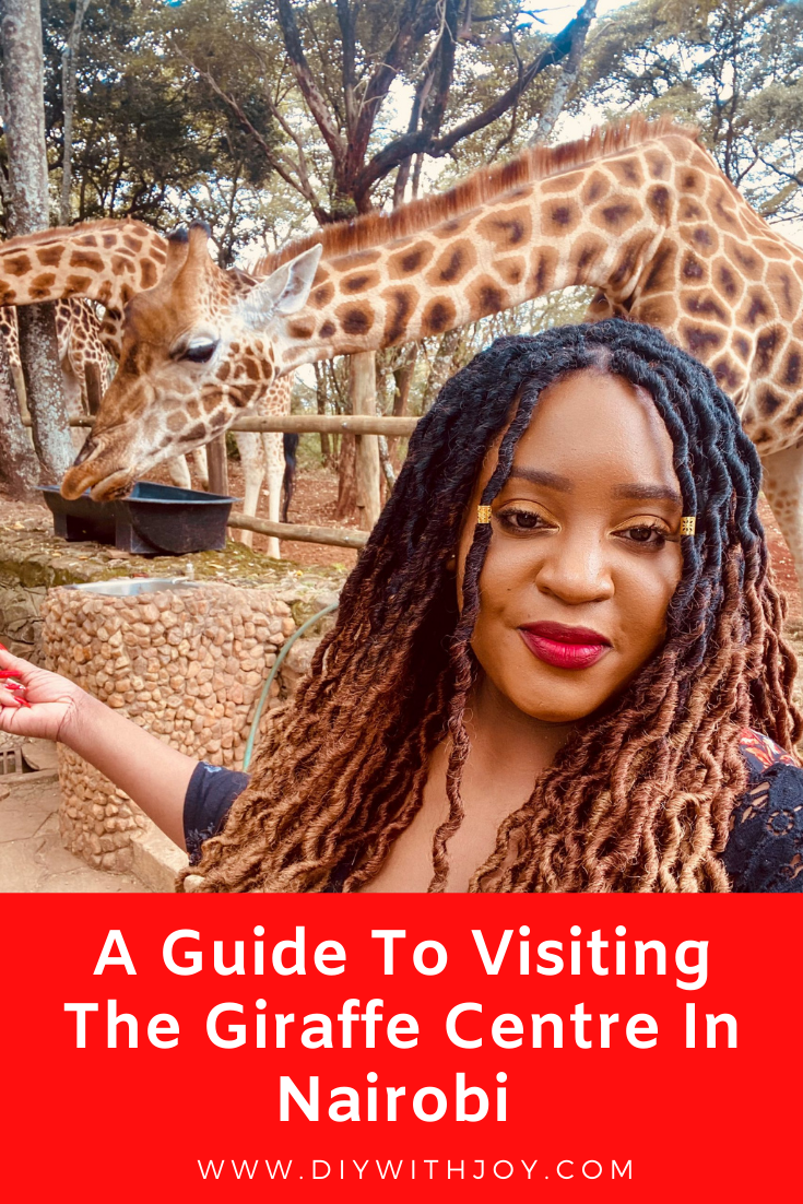 pintrest pin for a guide to visiting giraffe centre